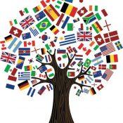 https://belgiumstjohn.files.wordpress.com/2014/09/flag-tree-final.jpg