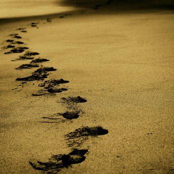 In cammino...